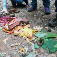 Autunno all'orto: ricette, storie, ecologia…e laboratori