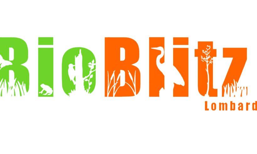 BIOBLITZ 2020: il 12 e il 13 settembre la Biodiversità ti aspetta!